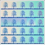 SHIMURA HIROSHI:  Twin Trees/Green