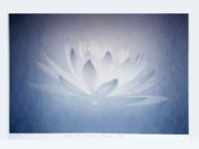 TOKITOH AYAKO:  White Lotus Flower (4)