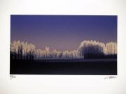 SHIMURA HIROSHI:  Nocturnal Tale/Blue