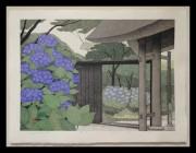 OHTSU KAZUYUKI:  Hydrangeas in Kamakura