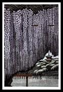 MORIMURA RAY: Sankei-en Wisteria