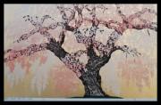NAMIKI HAJIME: Minobusan Kuonji Temple Weeping Cherry Tree