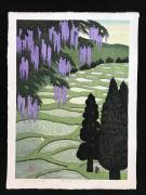 OHTSU KAZUYUKI: Wisterias in the Mountain