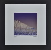 SHIMURA HIROSHI: Daffodils Symphony