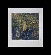 SHIMURA HIROSHI: Gold Forest