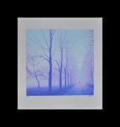 SHIMURA HIROSHI: Misty Walk