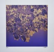 SHIMURA HIROSHI: Purple Glitter