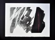 SHINODA TOKO: Sonority