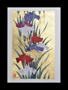 Sugiura Kazutoshi: Iris No. 162