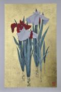 SUGIURA KAZUTOSHI: Iris No. 163